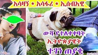 [አሳዛኝ * አሳፋሪ * ኢሰብአዊ] ውሻ የተለቀቀባት ኢትዮጵያዊት ተገን ጠያቂ - Ethiopian Immigrants in Western Countries - DW