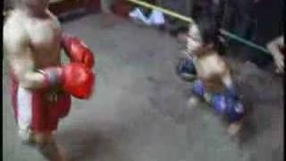 midgets boxing