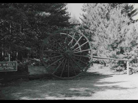 White Pine History: Logging in Michigan
