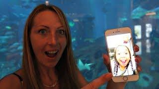 Calling Tiana On Facetime! Giant Shark Aquarium