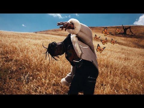 download lagu Travis Scott - Butterfly Effect Music gratis