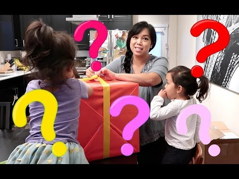 GIANT MYSTERY BOX! - November 17, 2017 -  ItsJudysLife Vlogs
