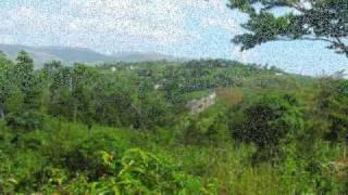 My Summer In Haiti Beautiful