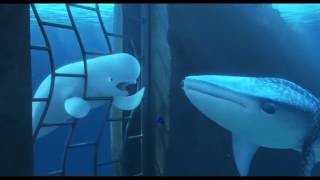 'Finding Dory' (2016) Official Clip 'You're a Beluga'