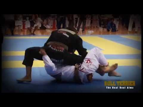 BULL TERRIER HL Brazilian Jiu-Jitsu Best moves & Submissions Image 1