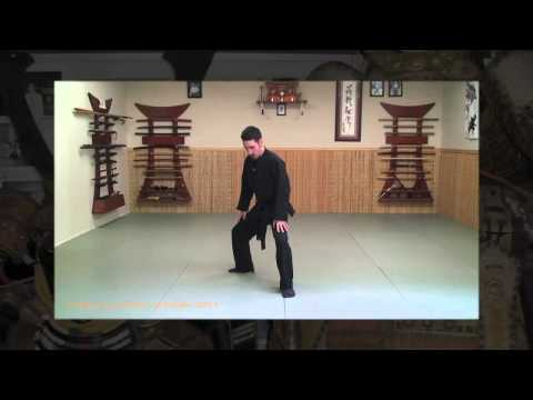 Ninjutsu - San Shin Beginner Mistakes - Ninja Training Video Blog Image 1