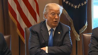 "WTF: Trump says DACA should be a ""bill of love"""