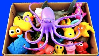 Learn Animals Names Box of Toys Jungle Animals Zoo Animals Sea Animals