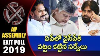 Report on AP, Telangana and National Exit Poll Surveys 2019  | hmtv