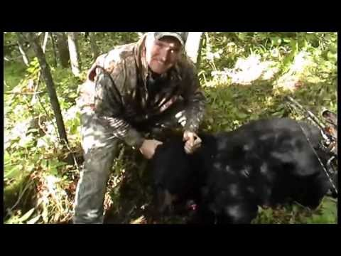 Wisconsin Black Bear Bow Hunt