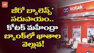 Zero Balance Saving Account Facility in Kotak Mahindra Bank | Kotak Zero Balance Account