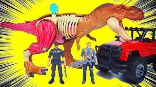 Make a Jurassic World Stem Tyrannosaurus Rex Anatomy Kit toy & Raptor Blue, Indoraptor