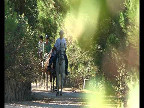 Rutas a caballo Jarahonda Video
