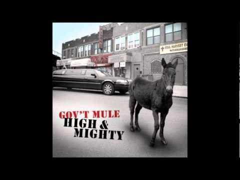 Govt Mule - Mr. High & Mighty