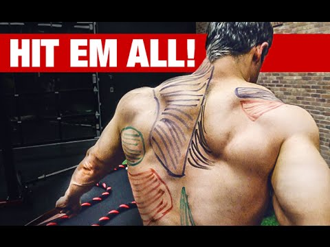Best Back Workout Video Ever HIT EVERY MUSCLE!!