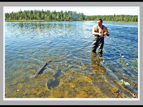рыбалка в тыве базы