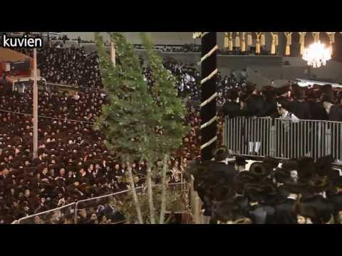 Highlights of the Belz Wedding in Jerusalem [HD] | ק��פ �ת�נ� �ע�� ��ר�ש���