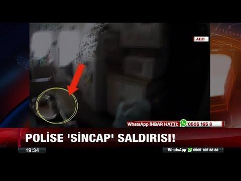 Polise sincap saldırısı!