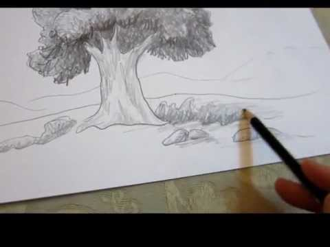 Easy Forest Tree Drawing How to Draw a Tree in