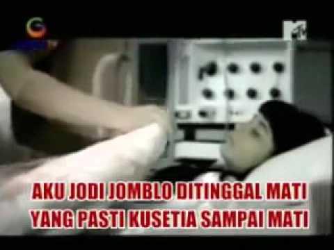 download lagu WALI, Jodi Jomblo Di Tinggal Mati   Muhcklis gratis