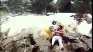 Bhanupriya Hot Song 4