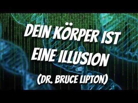 Dein Körper ist eine Illusion (Dr. Bruce Lipton) Dieses Video wird dein Leben komplett verändern!
