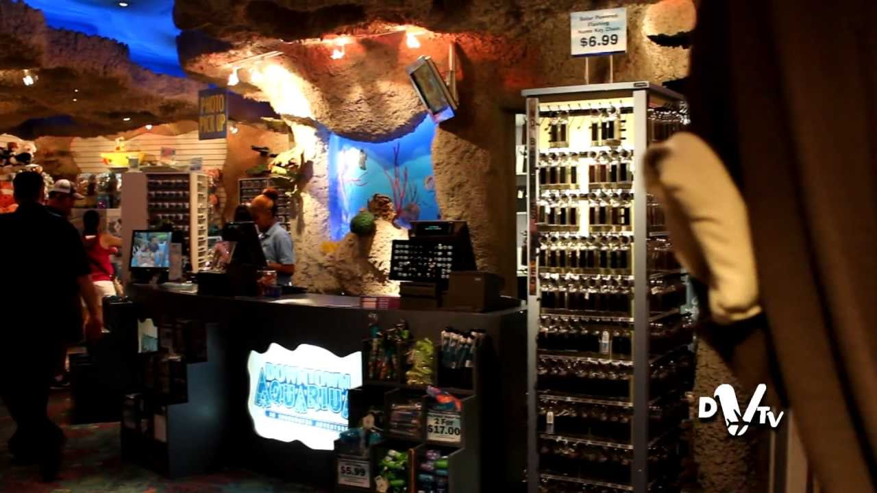 Downtown Aquarium Houston Texas Youtube
