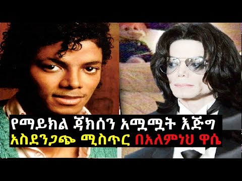 The Secret Life Of Michael Jackson By Alemneh Wasse