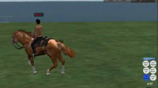 Water horse: Riding System
