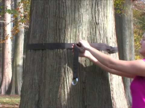 How to Install Your Tree Straps