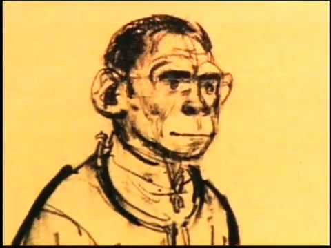 Planet of the Apes - Background Info. Pt2