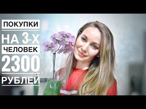 ПОКУПКИ ЕДЫ Лента 2300 рублей