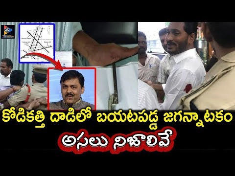 YS Jagan attacked -  Reveals Shocking Facts | AP CM Chandrababu naidu | TFC NEWS