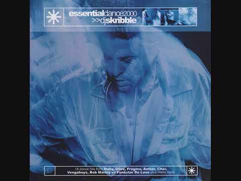 DJ Skribble – Essential Dance 2000