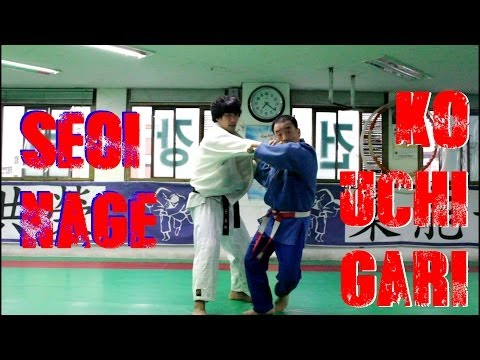 Seoi Nage and Ko Uchi Gari Combination by Korean 7th Dan (HD) Image 1