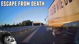 Daily Observations and Trolls of the Week 89 ✦ Subscribers Edition ✦ [Dashcam Europe]