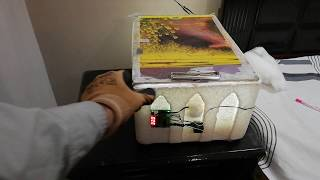 Homemade egg incubator I Cost 500 Rs only.