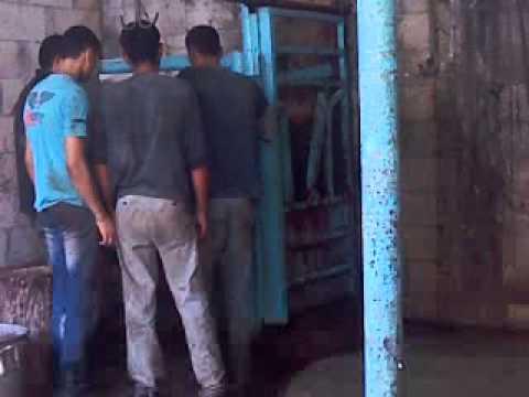 ذبح عجل العيد غزة لعائلة / الشوّا وسكيك وحرز الله 26/10/2012