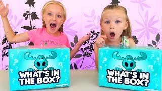 What's in the Box Challenge With New Pikmi Pop Style Series! Don't Open the Wrong Mystery Box!!