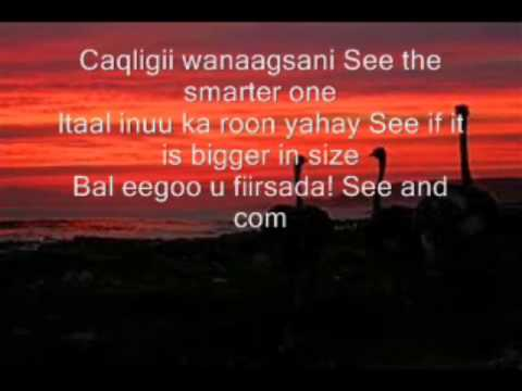 hiba nuura (GORAYADU LYRICS english and somali