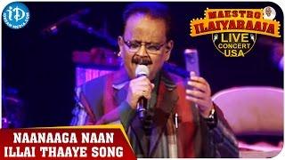 Maestro Ilaiyaraaja Live Concert - Naanaaga Naan Illai Thaaye Song - SP Balasubrahmanyam