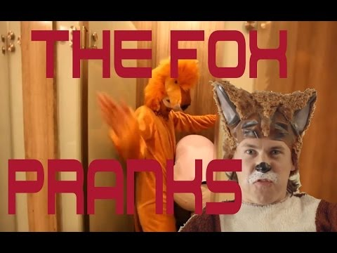 The Fox Song Pranks @ylvis