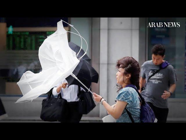 Strongest typhoon in quarter century hits Japan