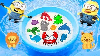 Learn Animal Names with Wild Animals for Kids and Sea Animals in Foam Water with Sharks and Dolphin