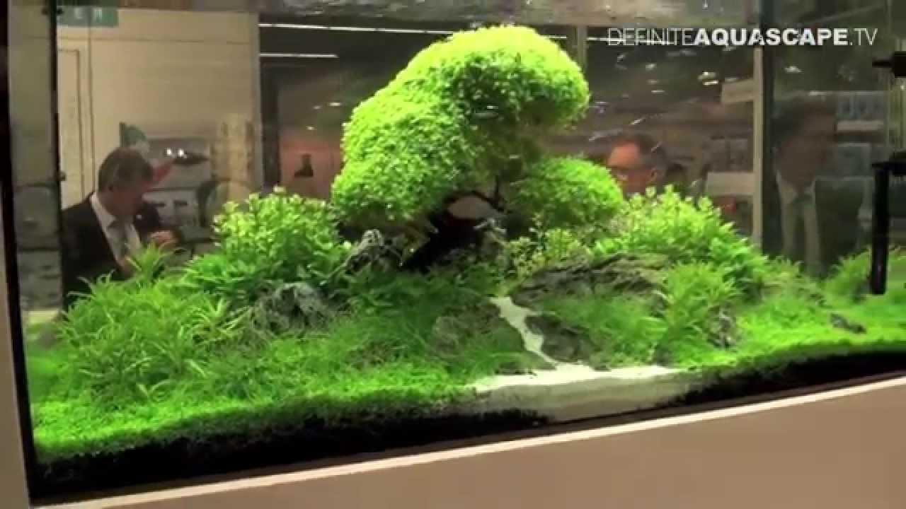Aquarium Ideas From InterZoo 2014 pt32 OASE GmbH