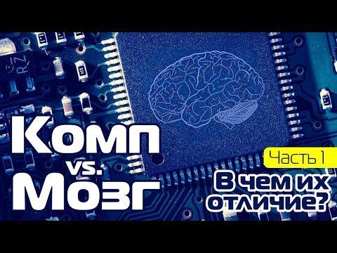 КОМП vs. МОЗГ | Часть 1 – Чем они отличаются?
