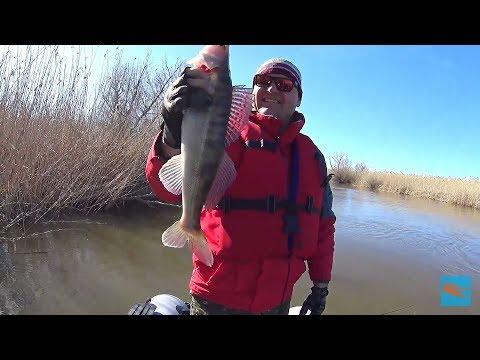 Рыбалка в Астрахани весна 2018 часть 1