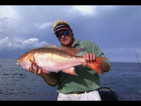 Rodeo Redemption - SNAPPER and GROUPER fishing