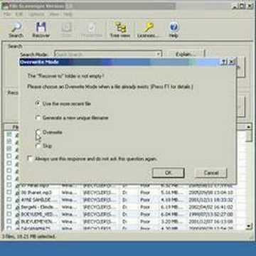 File Scavenger 3.0