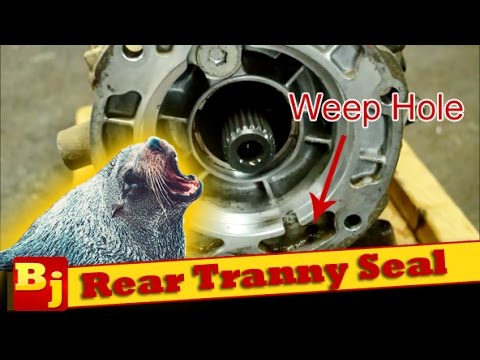 Replace a Leaking Rear Transmission Seal